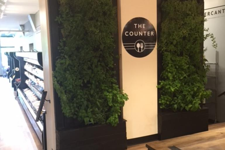 The Counter Photo #0
