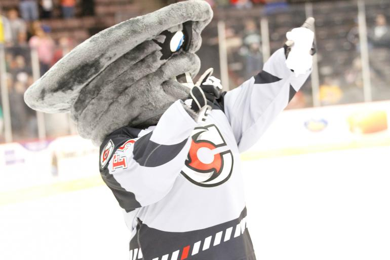 Cincinnati Cyclones Hockey Photo #9