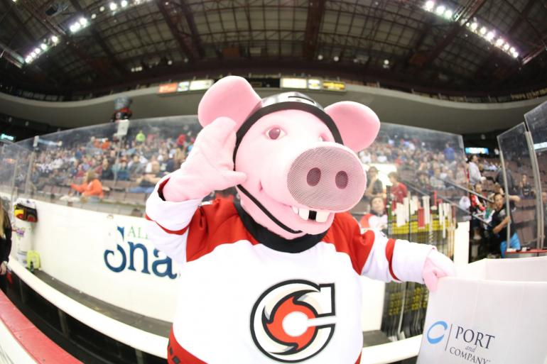 Cincinnati Cyclones Hockey Photo #1