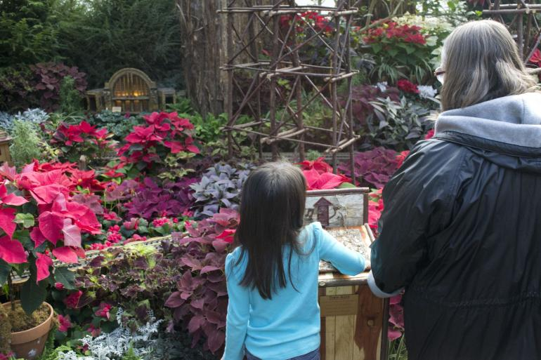 Krohn Conservatory Photo #8