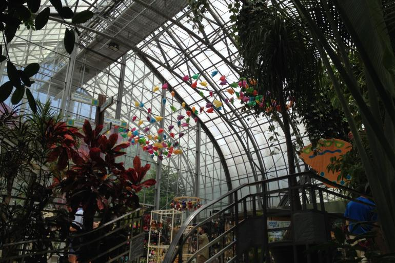 Krohn Conservatory Photo #5
