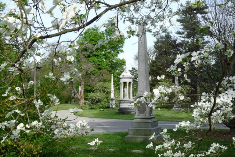 Cycling Backroads: Spring Grove Cemetery and Arboretum Tour Photo #0