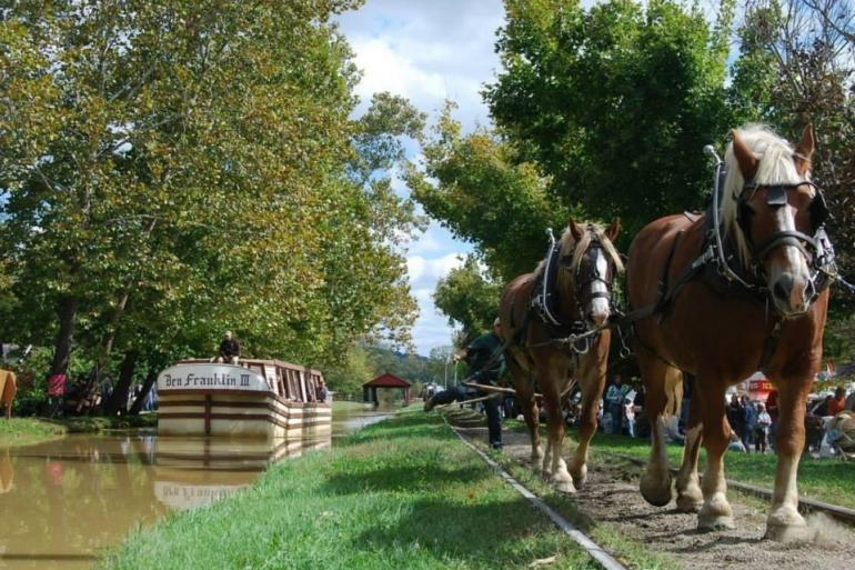 Metamora's Horse-Drawn Canal Boat Photo #1