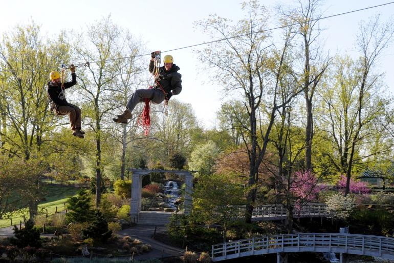 Screaming Raptor Zip Line and Canopy Adventure Tours Photo #0