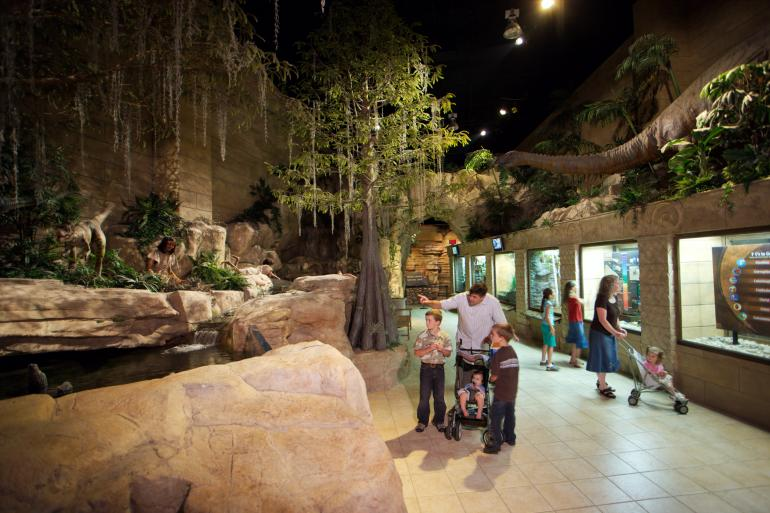 Creation Museum Photo #4