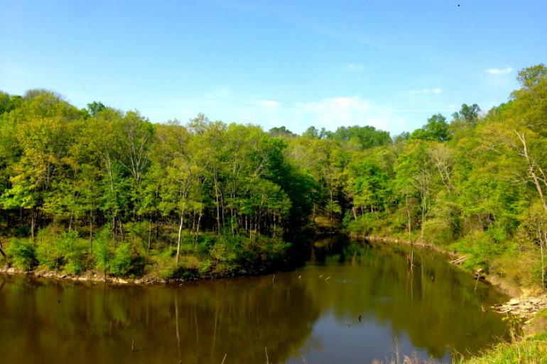 East Fork State Park Photo #0