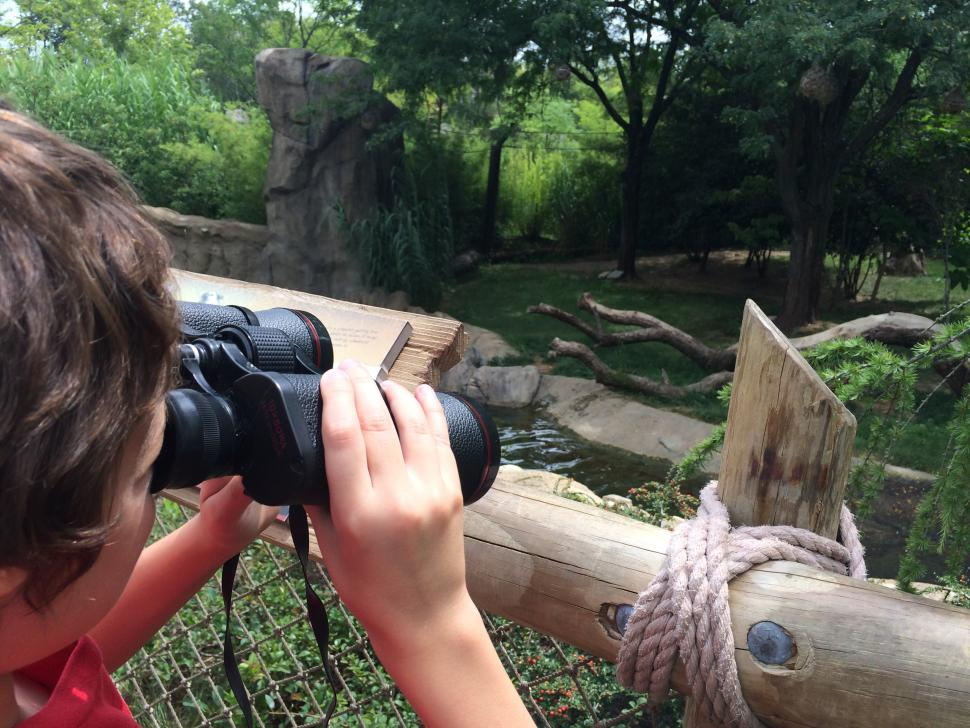 Cincinnati Zoo & Botanical Garden (photo: Shannan Boyer)