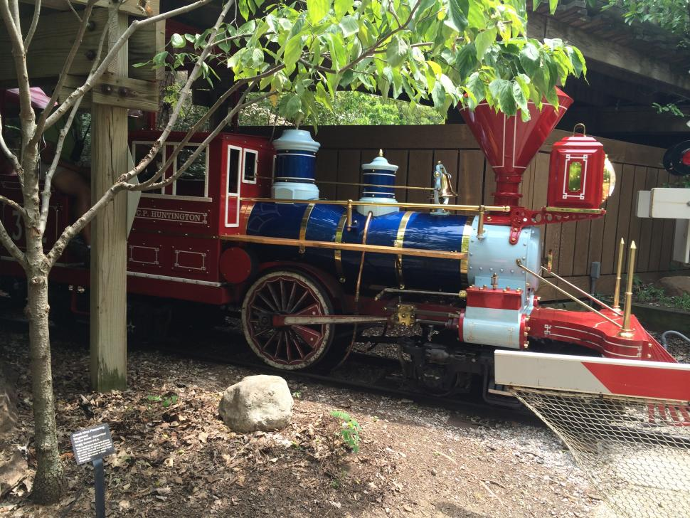 Cincinnati Zoo Train (photo: Shannan Boyer)
