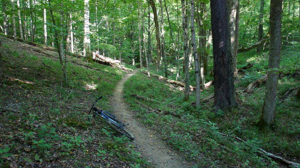 East Fork Mountain Bike Trails
