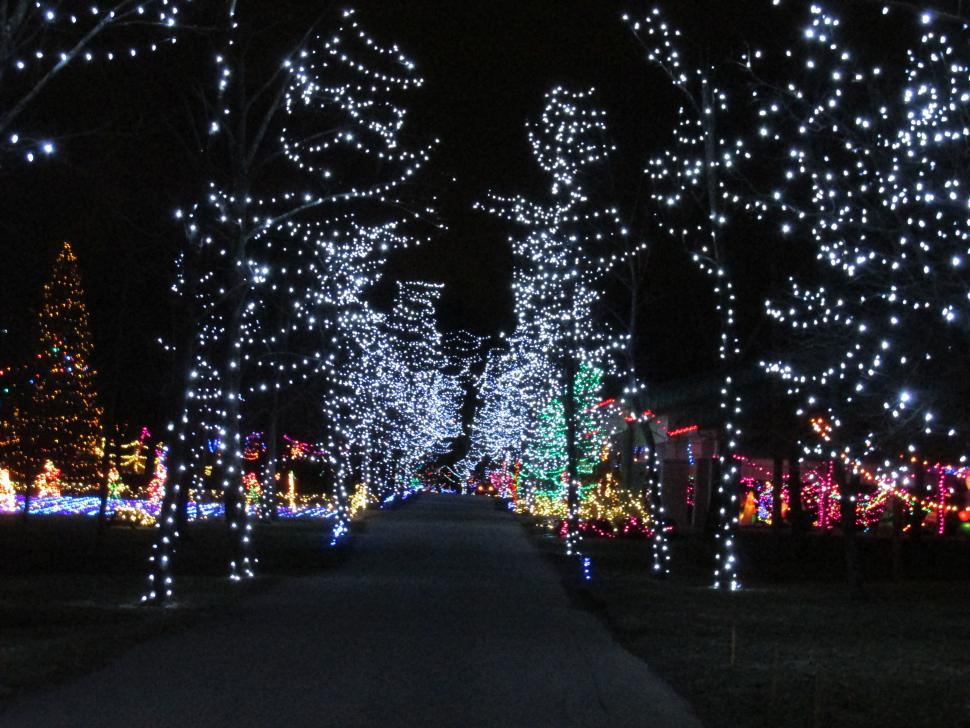 Holiday Lights On The Hill