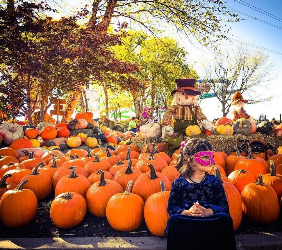 The Great Pumpkin Fest at Kings Island (photo: @anjaligupta.r)