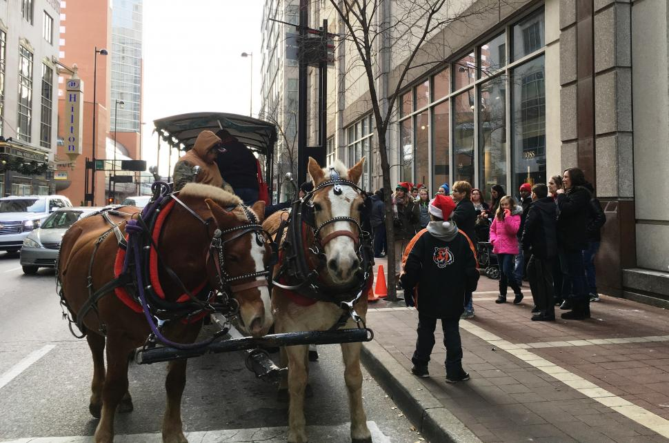 Weekend Carriage Rides at Macy's Celebration Station