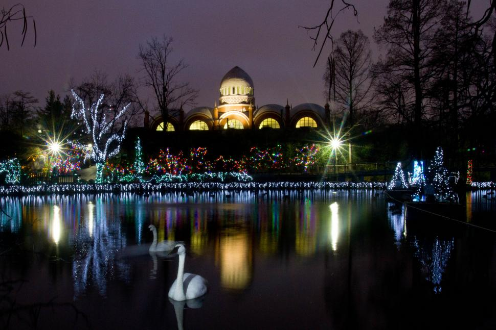 Pnc Festival Of Lights Cincinnati Zoo