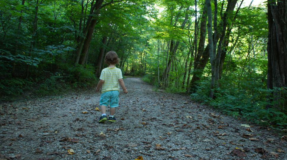 Perfect trail for family hiking adventures at Redbird Hollow Trail