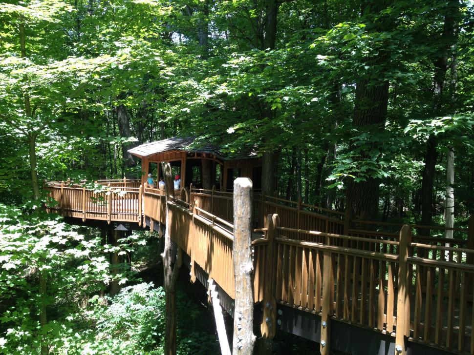 Mt. Airy Forest Treehouse
