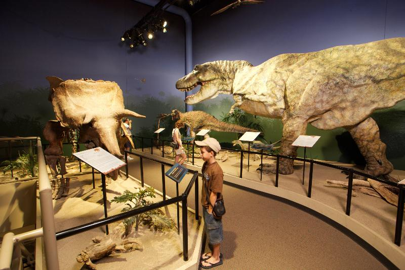Creation Museum (photo: Creation Museum)