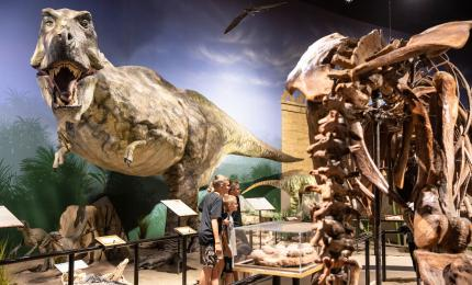 Creation Museum (photo: Answers in Genesis)