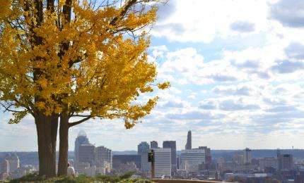 Bellevue Hill Park (photo: Cincinnati Parks)