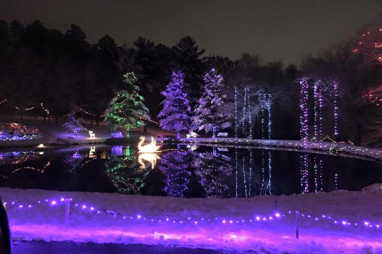 Holiday Lights on the Hill Photo #5