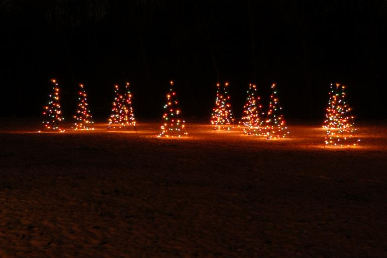 Holiday in Lights Photo #4