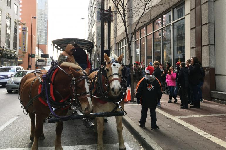 Weekend Carriage Rides at Macy's Celebration Station Photo #0