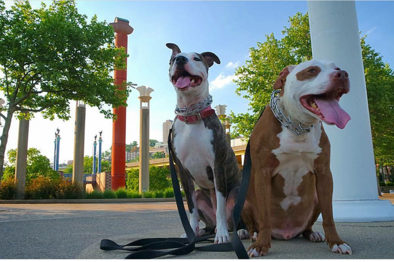 Tyson and Liddy at Theodore M. Berry International Friendship Park (photo: Eric Vice)