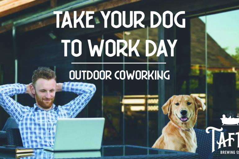 Outdoor Coworking: Take Your Dog to Work Day Photo #0