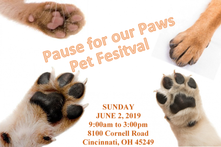 Pet Festival - Pause for our Paws Photo #0