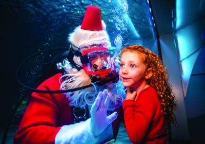 An Evening with Scuba Santa