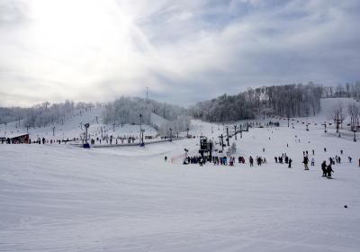 Perfect North Slopes' Annual Sale and Swap