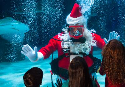 Water Wonderland with Scuba Santa