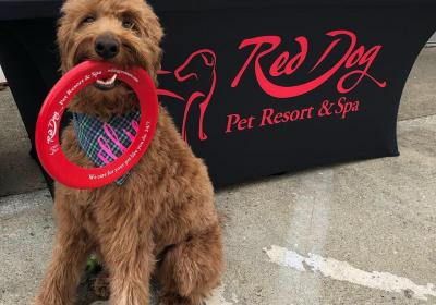 Red Dog's Mutt Market