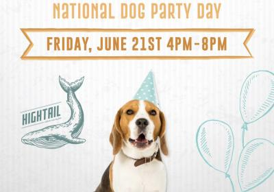 National Dog Party Day at Hightail