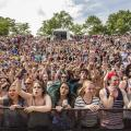 15 Summer Festivals in Cincinnati & Northern Kentucky
