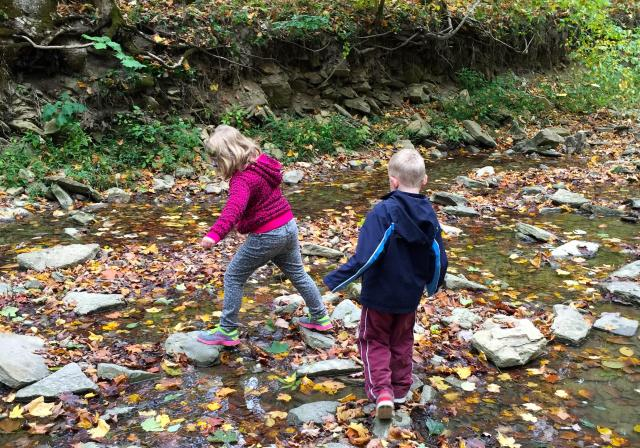 Kids playing in a creek at Cincinnati Nature Center (photo: Erin Woiteshek)