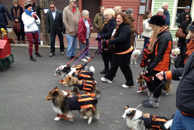 Reindog Parade, Mt Adams